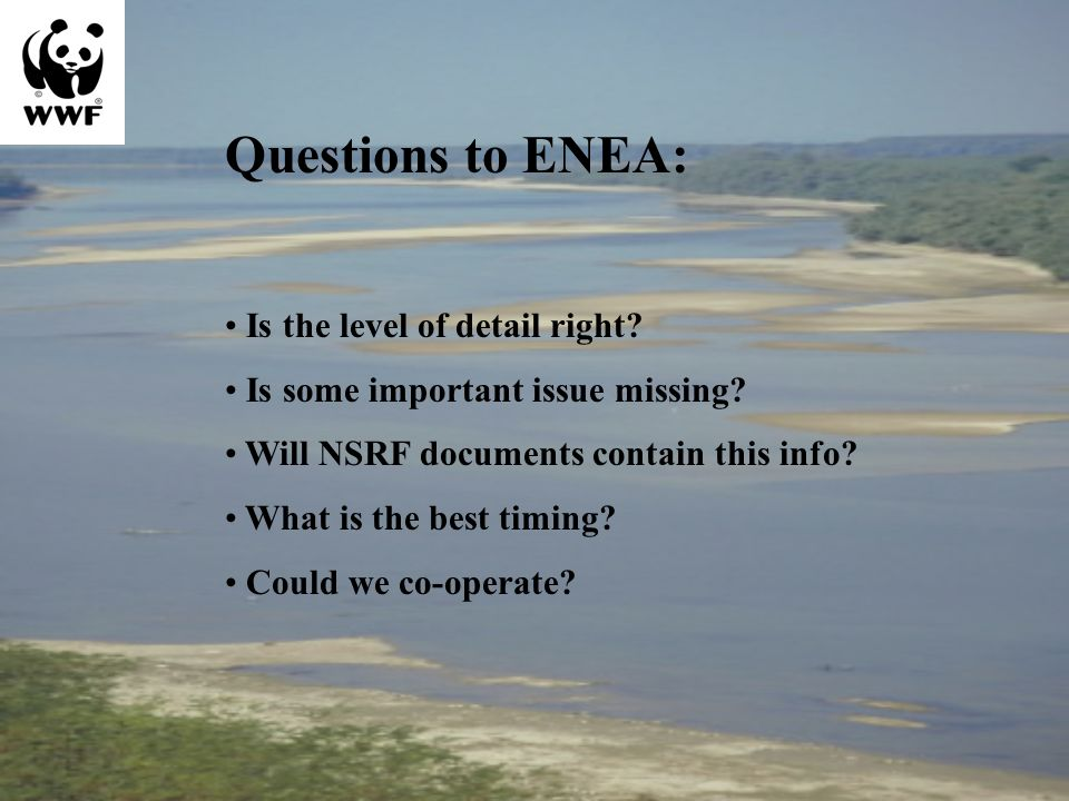 Questions to ENEA: Is the level of detail right. Is some important issue missing.