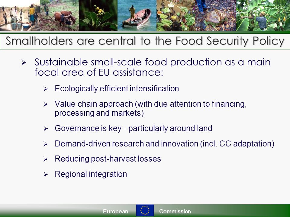 EuropeanCommission Smallholders are central to the Food Security Policy Sustainable small-scale food production as a main focal area of EU assistance: Ecologically efficient intensification Value chain approach (with due attention to financing, processing and markets) Governance is key - particularly around land Demand-driven research and innovation (incl.