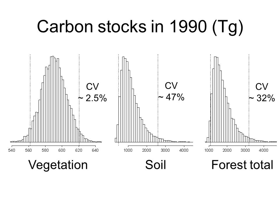 Carbon stocks in 1990 (Tg) VegetationSoilForest total CV ~ 2.5% CV ~ 47% CV ~ 32%