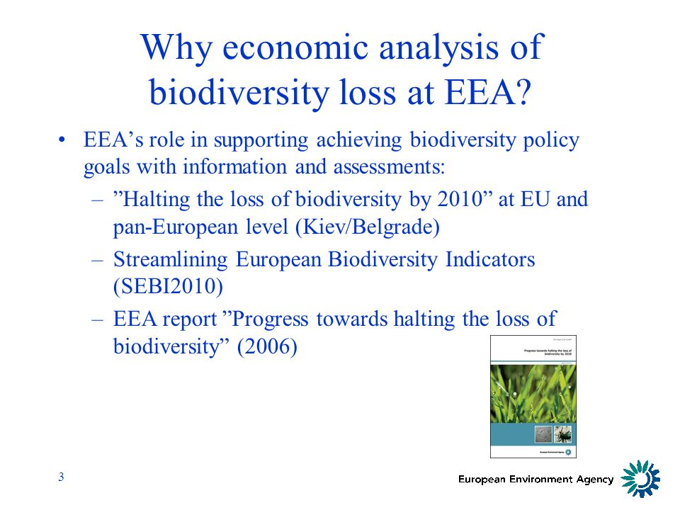 3 Why economic analysis of biodiversity loss at EEA.