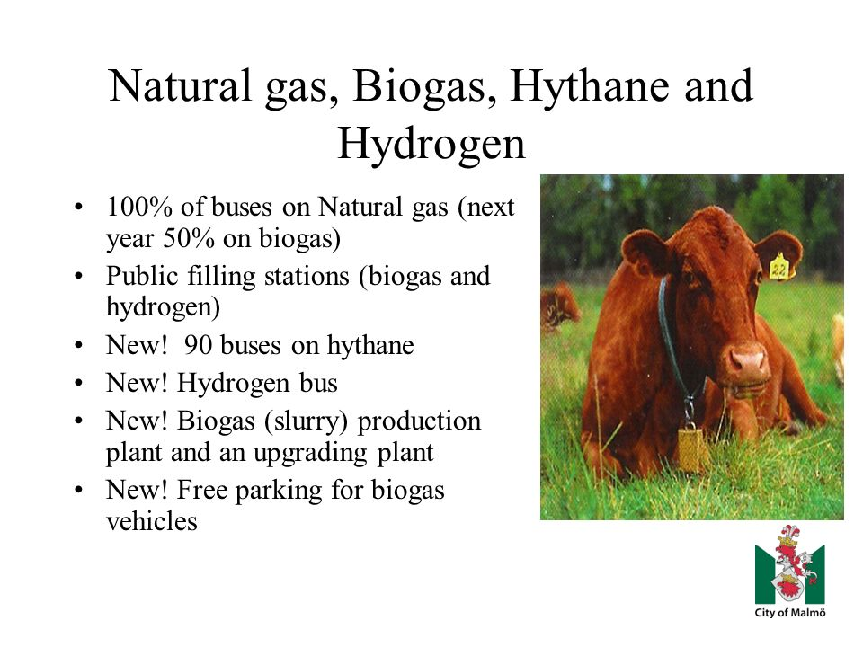 Natural gas, Biogas, Hythane and Hydrogen 100% of buses on Natural gas (next year 50% on biogas) Public filling stations (biogas and hydrogen) New.