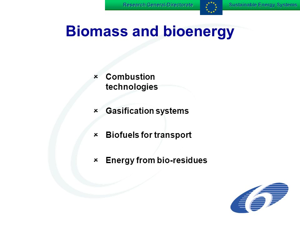 Research General-Directorate Sustainable Energy Systems Biomass and bioenergy Combustion technologies Gasification systems Biofuels for transport Energy from bio-residues