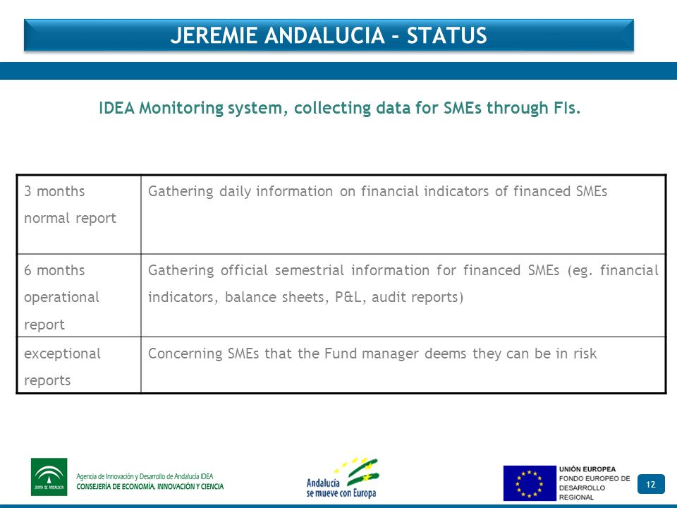 12 IDEA Monitoring system, collecting data for SMEs through FIs.