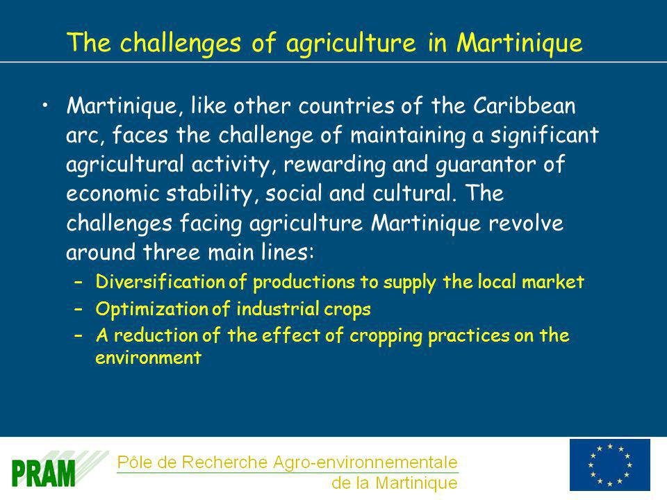 7 The challenges of agriculture in Martinique Martinique, like other countries of the Caribbean arc, faces the challenge of maintaining a significant agricultural activity, rewarding and guarantor of economic stability, social and cultural.