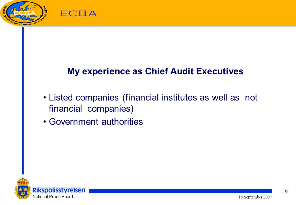 16 National Police Board 16 September 2009 My experience as Chief Audit Executives Listed companies (financial institutes as well as not financial companies) Government authorities