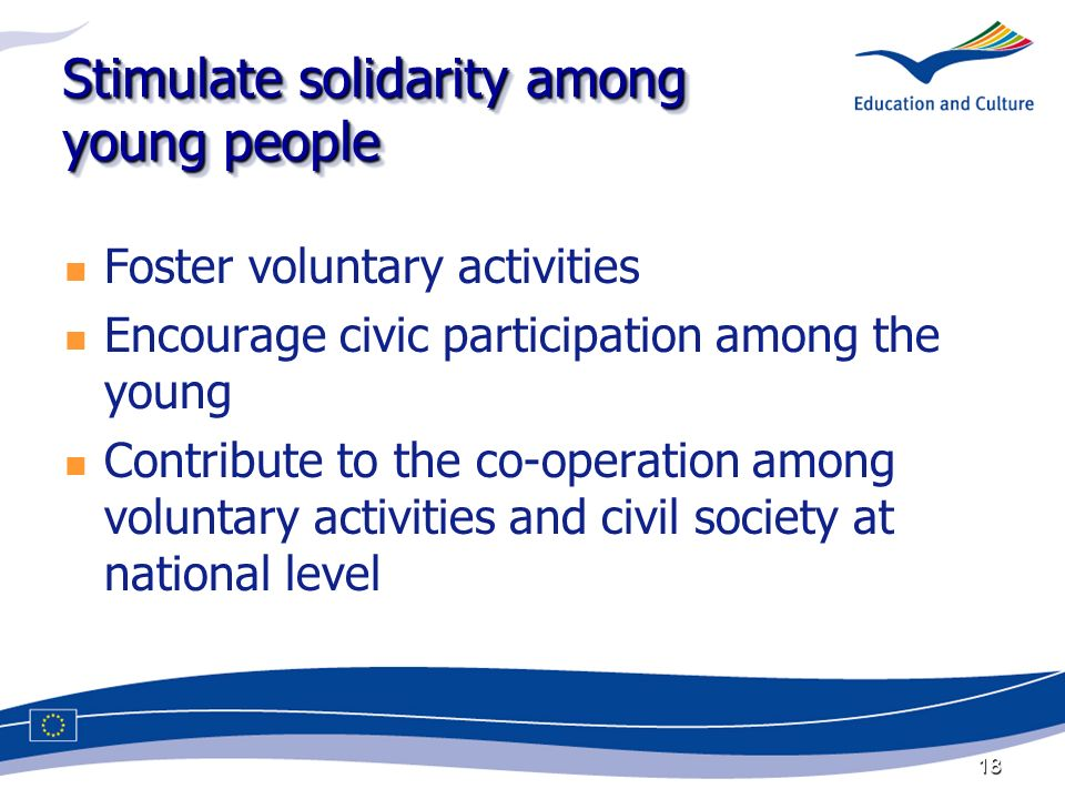 18 Stimulate solidarity among young people Foster voluntary activities Encourage civic participation among the young Contribute to the co-operation among voluntary activities and civil society at national level