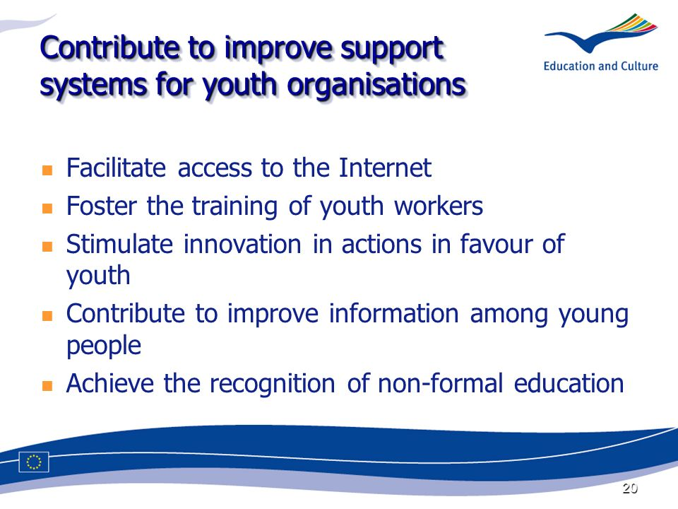 20 Contribute to improve support systems for youth organisations Facilitate access to the Internet Foster the training of youth workers Stimulate innovation in actions in favour of youth Contribute to improve information among young people Achieve the recognition of non-formal education