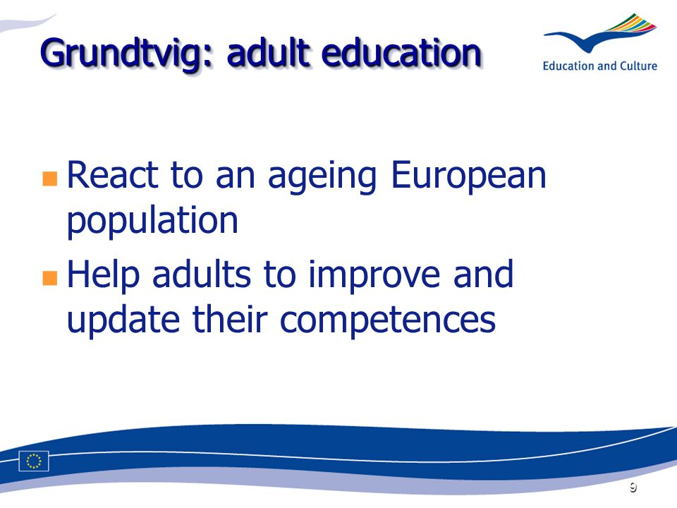 9 Grundtvig: adult education React to an ageing European population Help adults to improve and update their competences