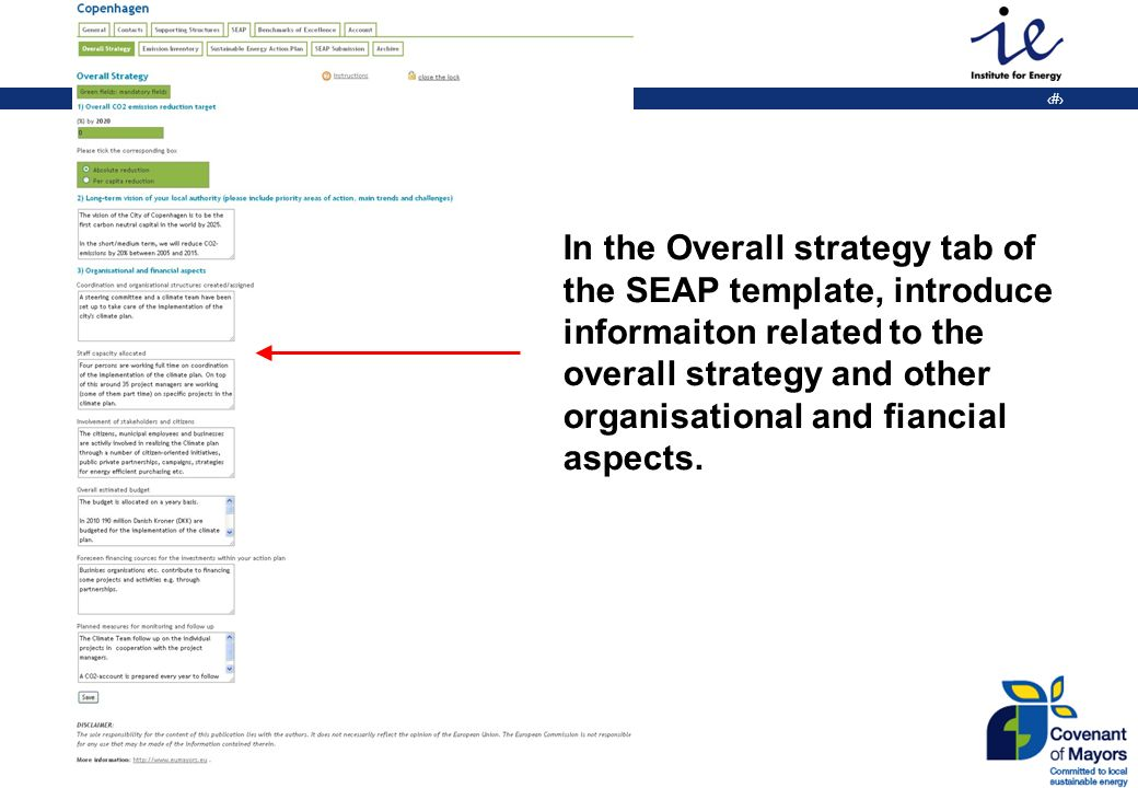 20 In the Overall strategy tab of the SEAP template, introduce informaiton related to the overall strategy and other organisational and fiancial aspects.