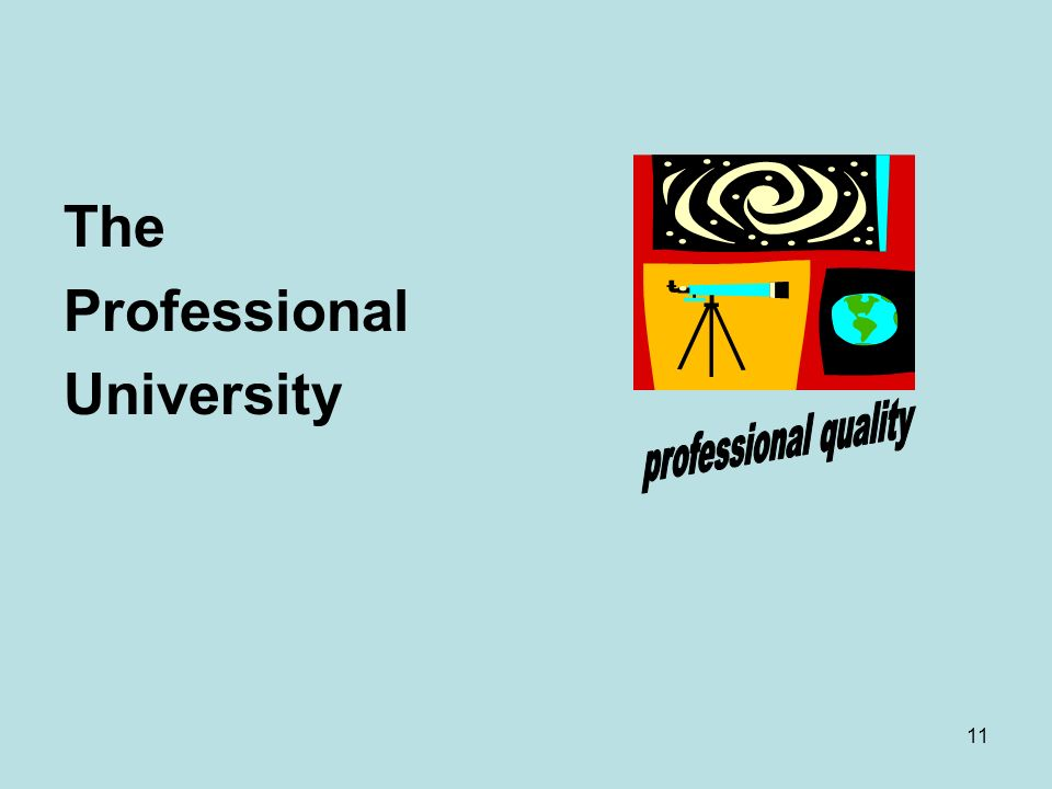 11 The Professional University