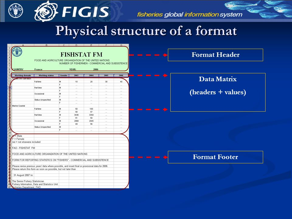 Physical structure of a format Format Header Data Matrix (headers + values) Format Footer