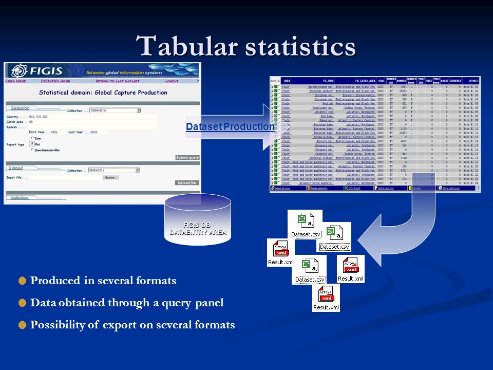 FIGIS DB DATAENTRY AREA Dataset Production Produced in several formats Data obtained through a query panel Possibility of export on several formats Tabular statistics