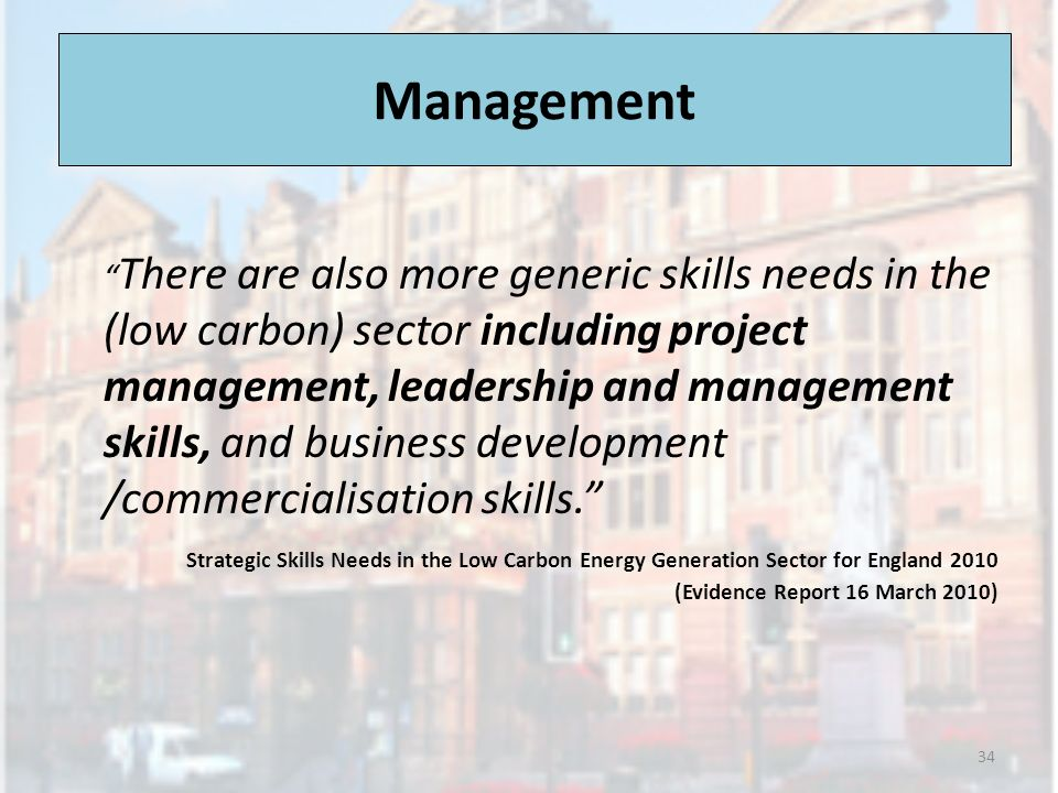 Management There are also more generic skills needs in the (low carbon) sector including project management, leadership and management skills, and business development /commercialisation skills.