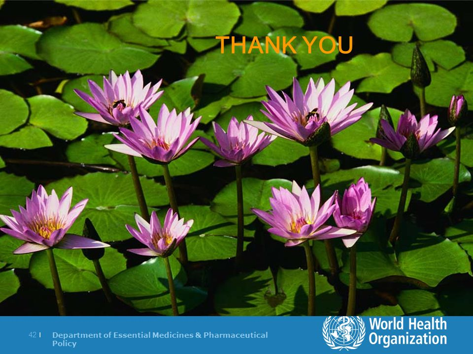 Department of Essential Medicines & Pharmaceutical Policy 42 | z THANK YOU