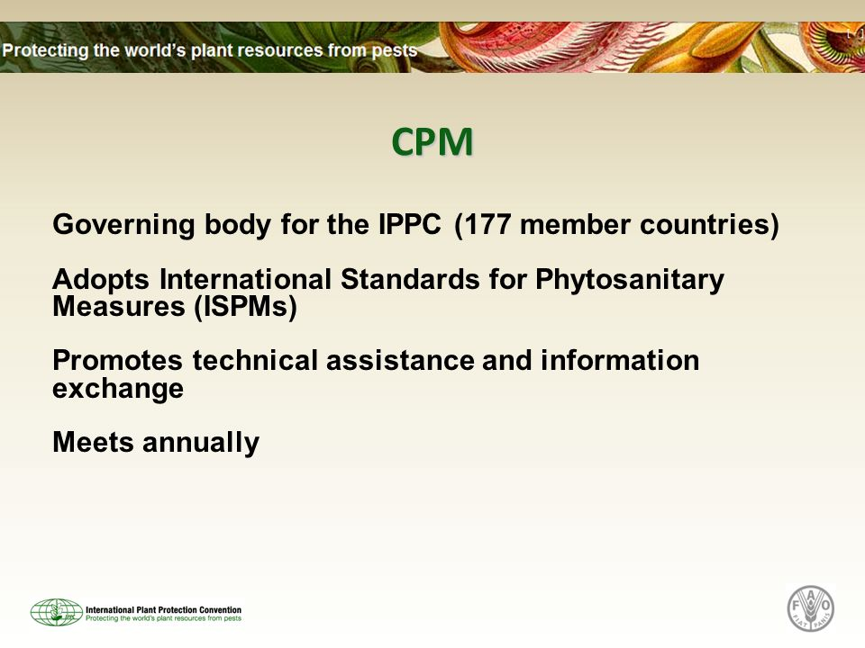 CPM Governing body for the IPPC (177 member countries) Adopts International Standards for Phytosanitary Measures (ISPMs) Promotes technical assistance and information exchange Meets annually