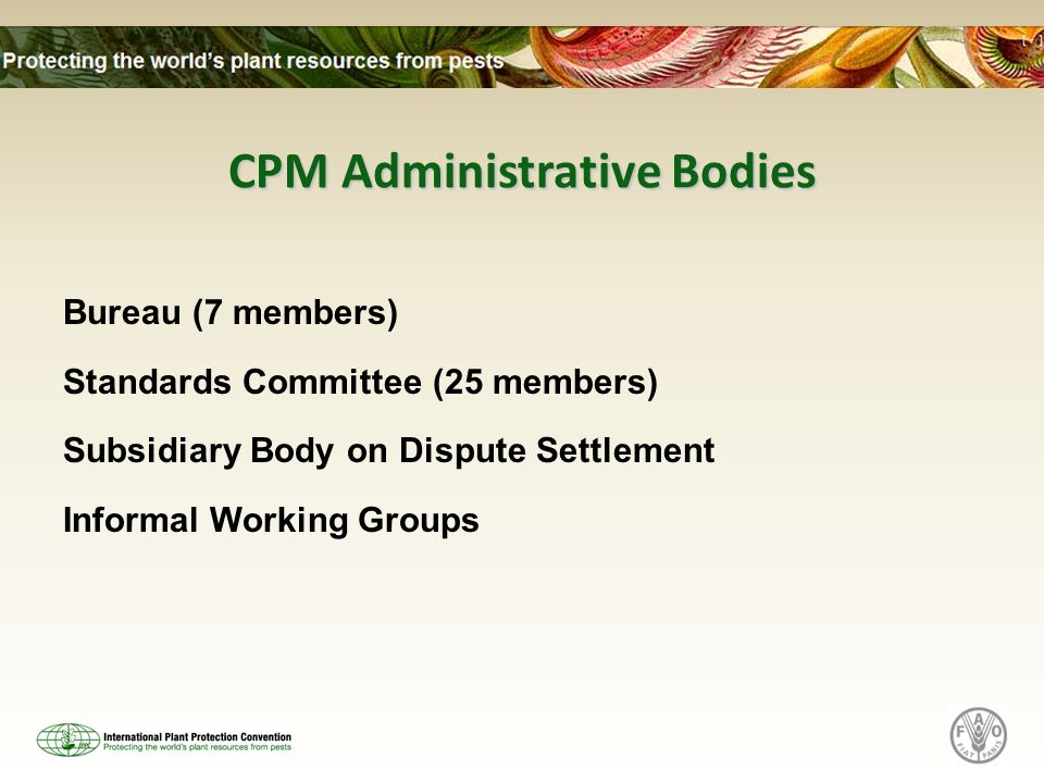 CPM Administrative Bodies Bureau (7 members) Standards Committee (25 members) Subsidiary Body on Dispute Settlement Informal Working Groups