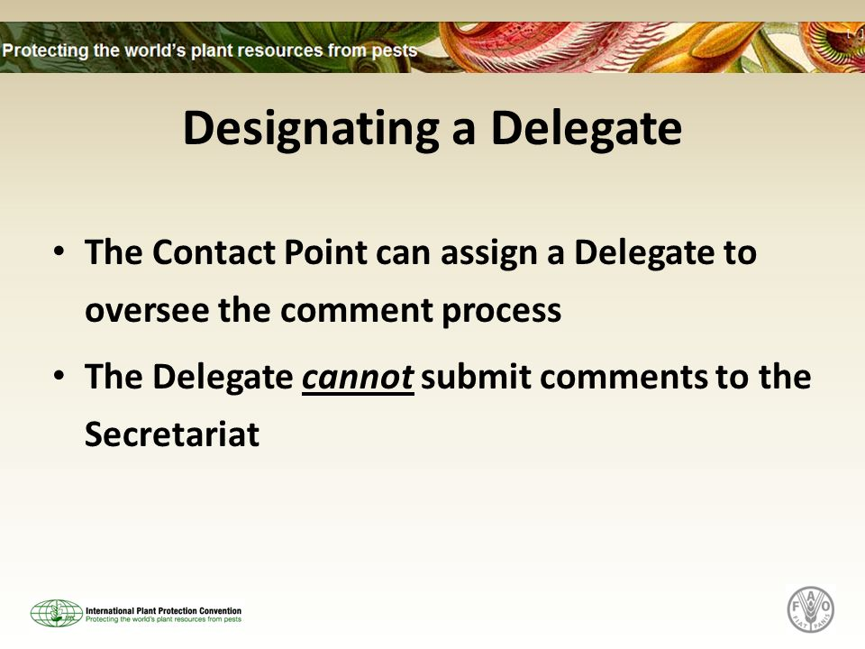 Designating a Delegate The Contact Point can assign a Delegate to oversee the comment process The Delegate cannot submit comments to the Secretariat