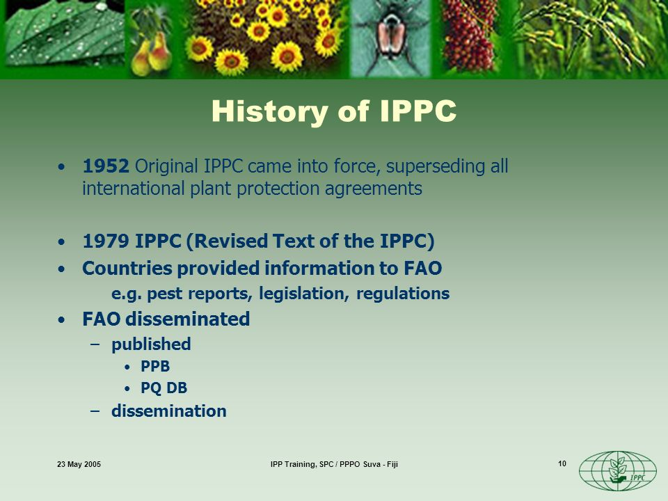23 May 2005IPP Training, SPC / PPPO Suva - Fiji 10 History of IPPC 1952 Original IPPC came into force, superseding all international plant protection agreements 1979 IPPC (Revised Text of the IPPC) Countries provided information to FAO e.g.