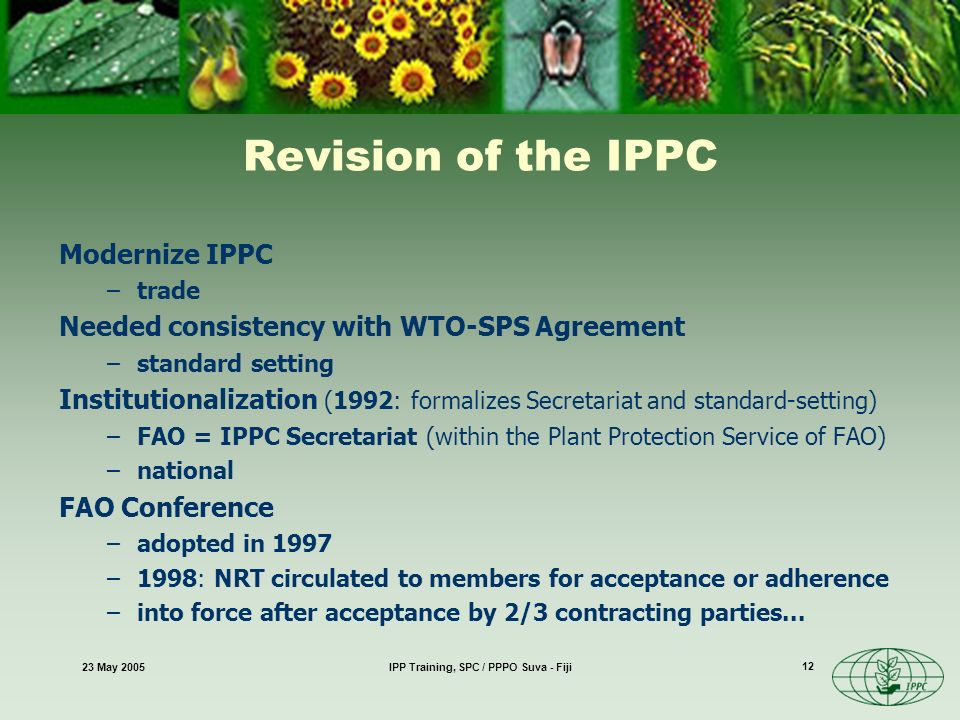 23 May 2005IPP Training, SPC / PPPO Suva - Fiji 12 Revision of the IPPC Modernize IPPC –trade Needed consistency with WTO-SPS Agreement –standard setting Institutionalization (1992: formalizes Secretariat and standard-setting) –FAO = IPPC Secretariat (within the Plant Protection Service of FAO) –national FAO Conference –adopted in 1997 –1998: NRT circulated to members for acceptance or adherence –into force after acceptance by 2/3 contracting parties...
