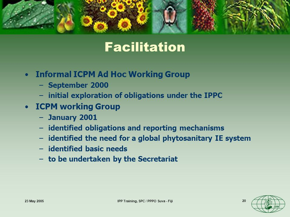 23 May 2005IPP Training, SPC / PPPO Suva - Fiji 20 Facilitation Informal ICPM Ad Hoc Working Group –September 2000 –initial exploration of obligations under the IPPC ICPM working Group –January 2001 –identified obligations and reporting mechanisms –identified the need for a global phytosanitary IE system –identified basic needs –to be undertaken by the Secretariat