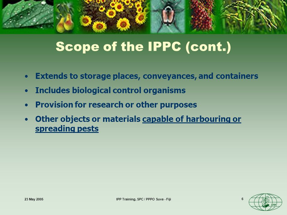 23 May 2005IPP Training, SPC / PPPO Suva - Fiji 6 Scope of the IPPC (cont.) Extends to storage places, conveyances, and containers Includes biological control organisms Provision for research or other purposes Other objects or materials capable of harbouring or spreading pests