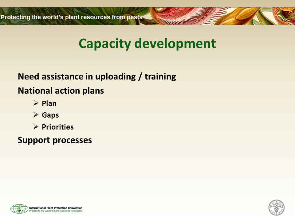 Capacity development Need assistance in uploading / training National action plans Plan Gaps Priorities Support processes