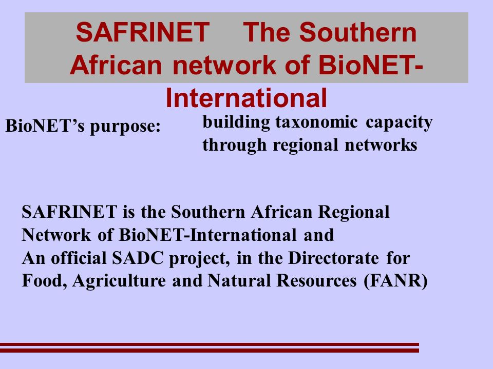 SAFRINET The Southern African network of BioNET- International BioNETs purpose: building taxonomic capacity through regional networks SAFRINET is the Southern African Regional Network of BioNET-International and An official SADC project, in the Directorate for Food, Agriculture and Natural Resources (FANR)