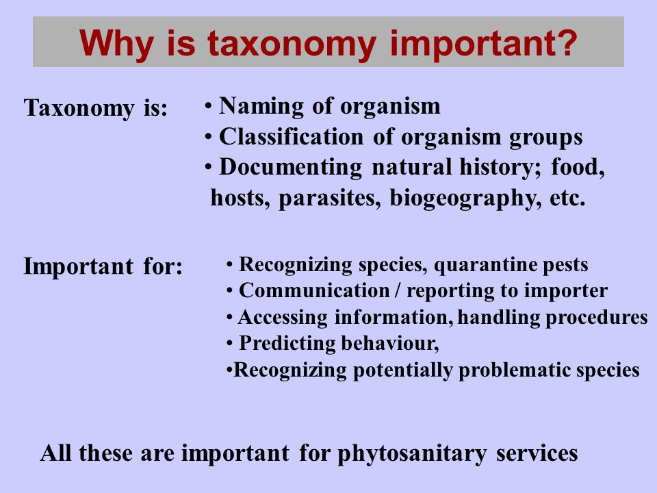 Why is taxonomy important.