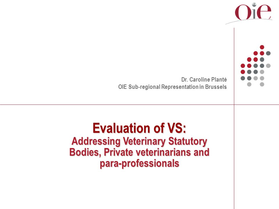 Evaluation of VS: Addressing Veterinary Statutory Bodies, Private veterinarians and para-professionals Dr.