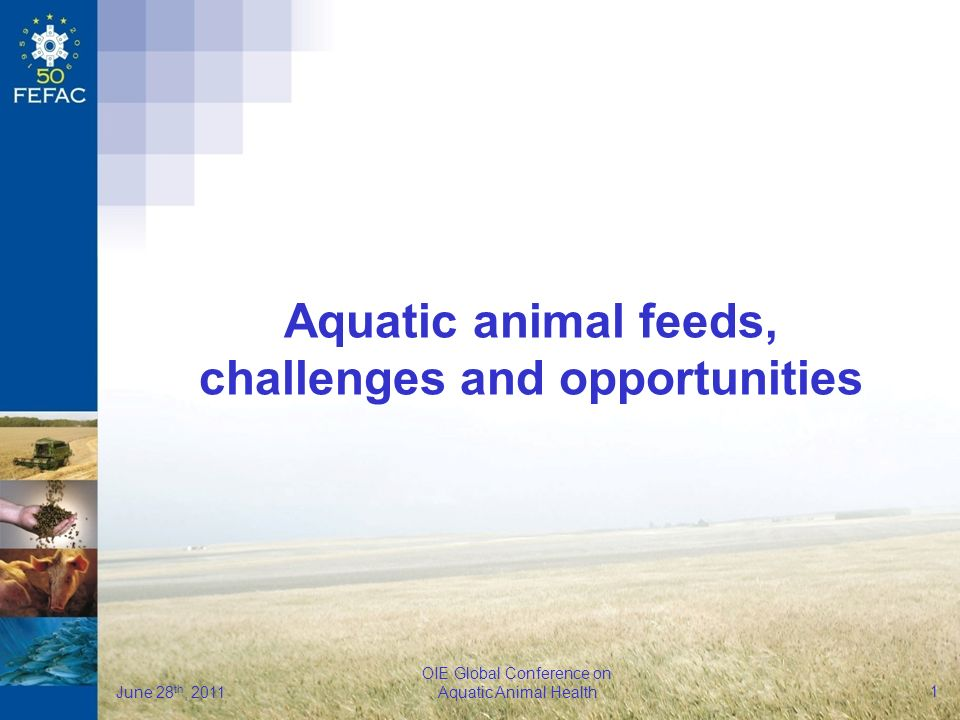 FEFAC OIE Global Conference on Aquatic Animal Health June 28 th, 2011 1 Aquatic animal feeds, challenges and opportunities