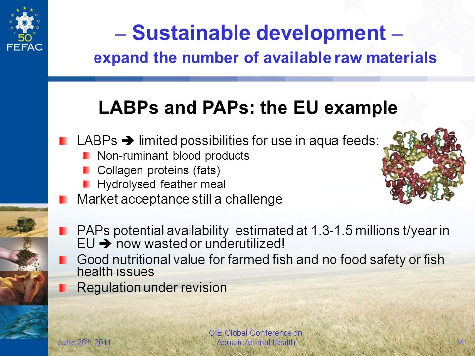 14 OIE Global Conference on Aquatic Animal Health June 28 th, 2011 LABPs limited possibilities for use in aqua feeds: Non-ruminant blood products Collagen proteins (fats) Hydrolysed feather meal Market acceptance still a challenge PAPs potential availability estimated at 1.3-1.5 millions t/year in EU now wasted or underutilized.