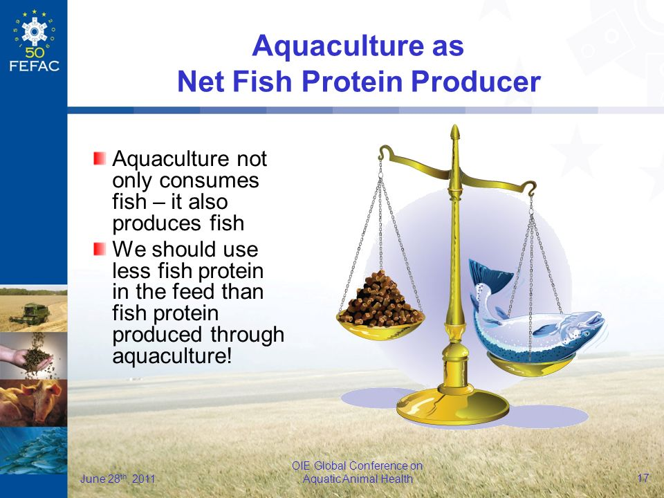 17 OIE Global Conference on Aquatic Animal Health June 28 th, 2011 Aquaculture not only consumes fish – it also produces fish We should use less fish protein in the feed than fish protein produced through aquaculture.