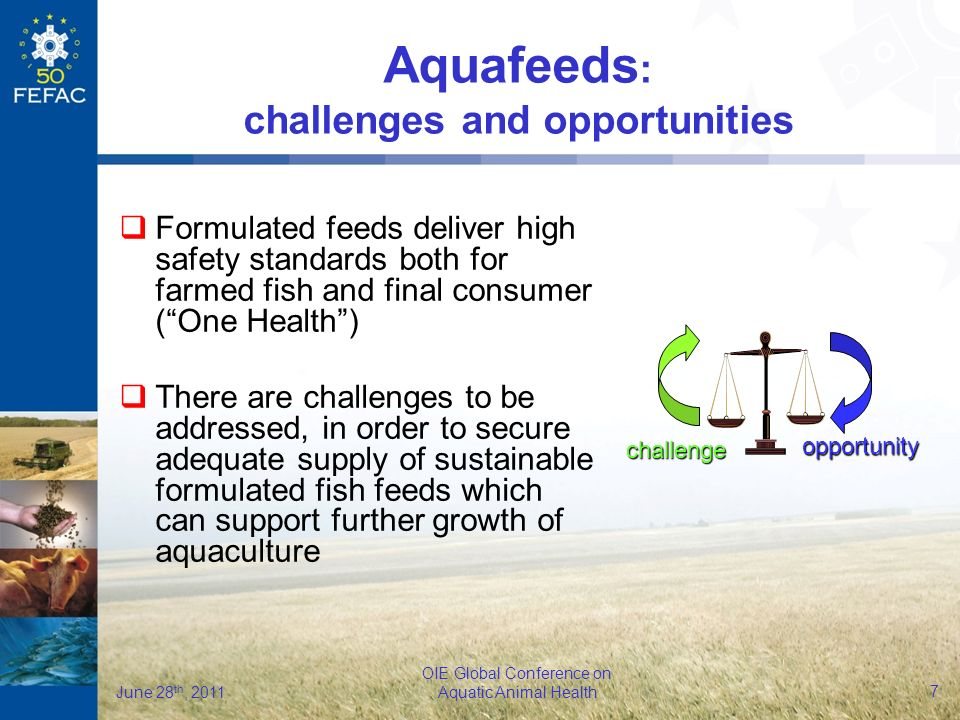 7 OIE Global Conference on Aquatic Animal Health June 28 th, 2011 challenge opportunity Aquafeeds : challenges and opportunities Formulated feeds deliver high safety standards both for farmed fish and final consumer (One Health) There are challenges to be addressed, in order to secure adequate supply of sustainable formulated fish feeds which can support further growth of aquaculture