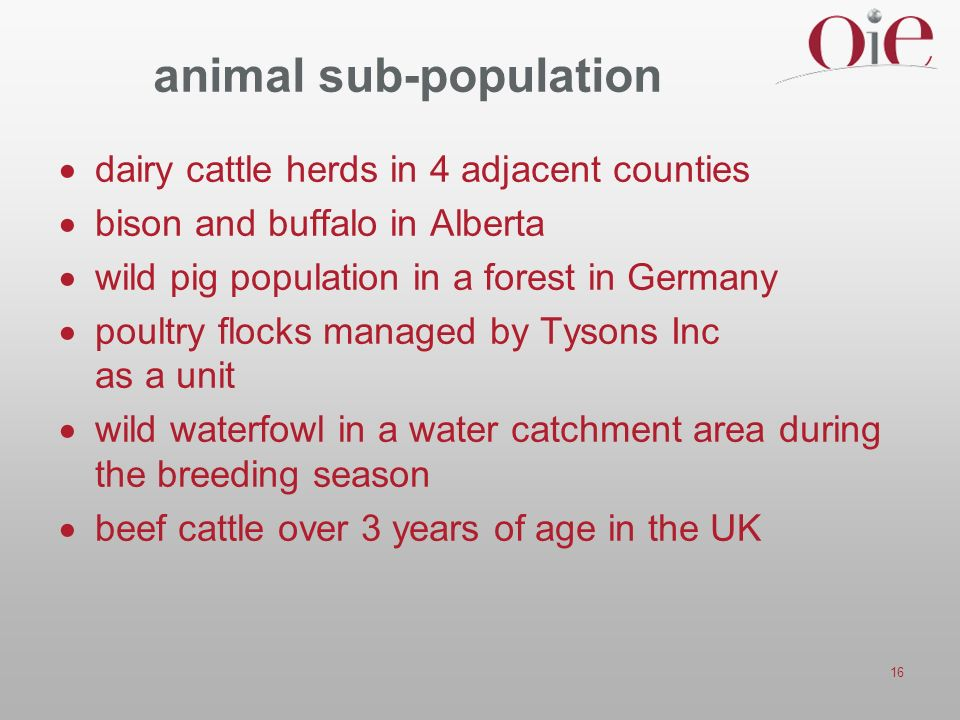 16 animal sub-population dairy cattle herds in 4 adjacent counties bison and buffalo in Alberta wild pig population in a forest in Germany poultry flocks managed by Tysons Inc as a unit wild waterfowl in a water catchment area during the breeding season beef cattle over 3 years of age in the UK