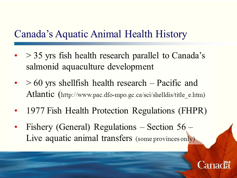 > 35 yrs fish health research parallel to Canadas salmonid aquaculture development > 60 yrs shellfish health research – Pacific and Atlantic ( http://www.pac.dfo-mpo.gc.ca/sci/shelldis/title_e.htm) 1977 Fish Health Protection Regulations (FHPR) Fishery (General) Regulations – Section 56 – Live aquatic animal transfers (some provinces only) Canadas Aquatic Animal Health History
