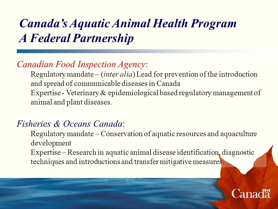 Canadas Aquatic Animal Health Program A Federal Partnership Canadian Food Inspection Agency: Regulatory mandate – (inter alia) Lead for prevention of the introduction and spread of communicable diseases in Canada Expertise - Veterinary & epidemiological based regulatory management of animal and plant diseases.