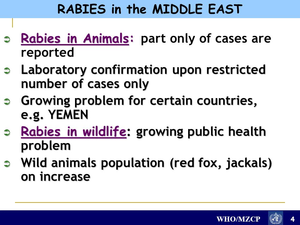 WHO/MZCP Rabies in Animals: Rabies in Animals: part only of cases are reported Laboratory confirmation upon restricted number of cases only Laboratory confirmation upon restricted number of cases only Growing problem for certain countries, e.g.