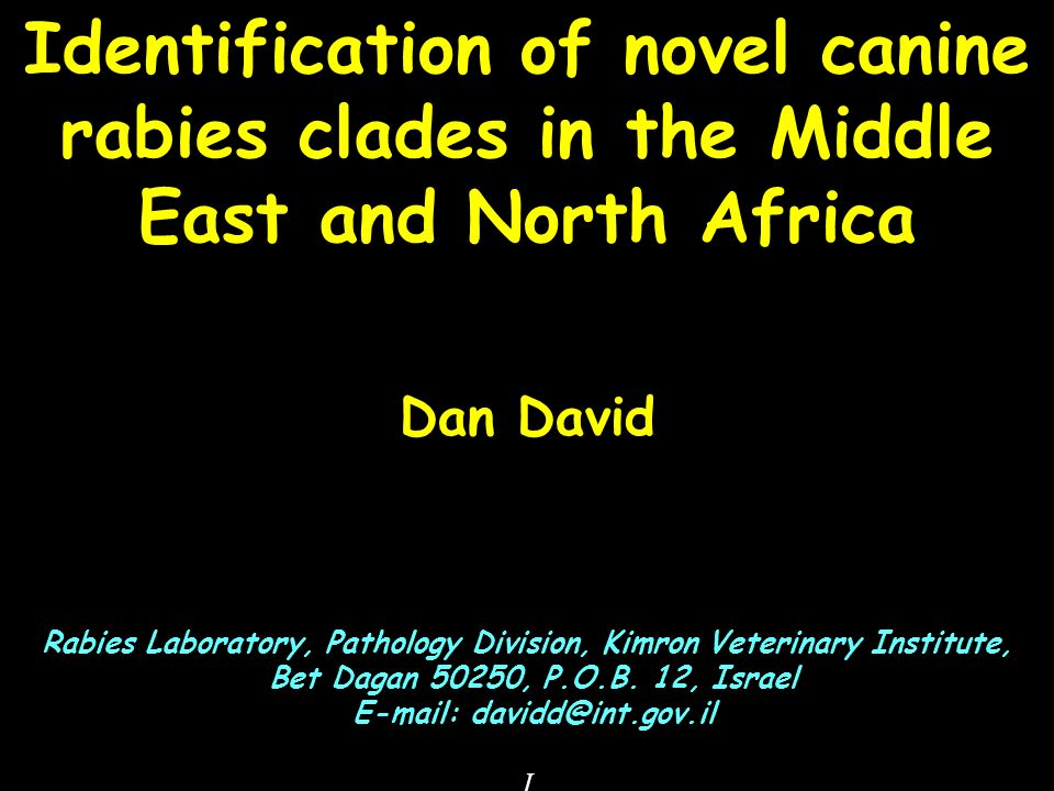 Identification of novel canine rabies clades in the Middle East and North Africa Dan David Rabies Laboratory, Pathology Division, Kimron Veterinary Institute, Bet Dagan 50250, P.O.B.