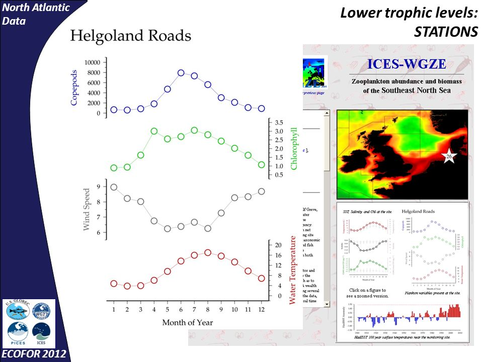 North Atlantic Data ECOFOR 2012 Lower trophic levels: STATIONS