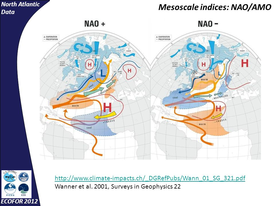 North Atlantic Data ECOFOR 2012 Mesoscale indices: NAO/AMO http://www.climate-impacts.ch/_DGRefPubs/Wann_01_SG_321.pdf Wanner et al.