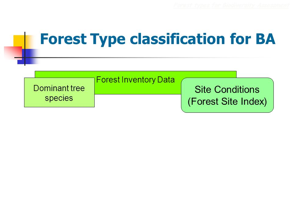 Forest Type classification for BA Forest types for Biodiversity Assessment Forest Inventory Data Dominant tree species Site Conditions (Forest Site Index)