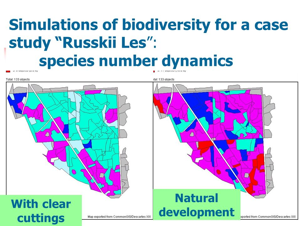 Simulations of biodiversity for a case study Russkii Les: species number dynamics With clear cuttings Natural development