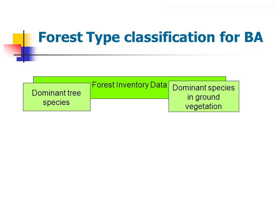 Forest Type classification for BA Forest types for Biodiversity Assessment Forest Inventory Data Dominant tree species Dominant species in ground vegetation