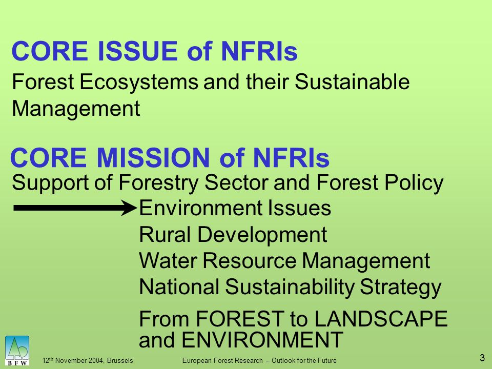 12 th November 2004, BrusselsEuropean Forest Research – Outlook for the Future 3 CORE ISSUE of NFRIs Forest Ecosystems and their Sustainable Management Environment Issues Rural Development Water Resource Management National Sustainability Strategy CORE MISSION of NFRIs Support of Forestry Sector and Forest Policy From FOREST to LANDSCAPE and ENVIRONMENT