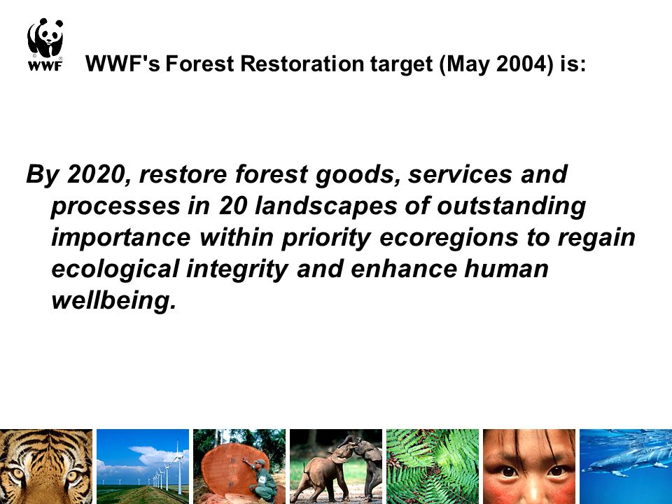 WWF s Forest Restoration target (May 2004) is: By 2020, restore forest goods, services and processes in 20 landscapes of outstanding importance within priority ecoregions to regain ecological integrity and enhance human wellbeing.