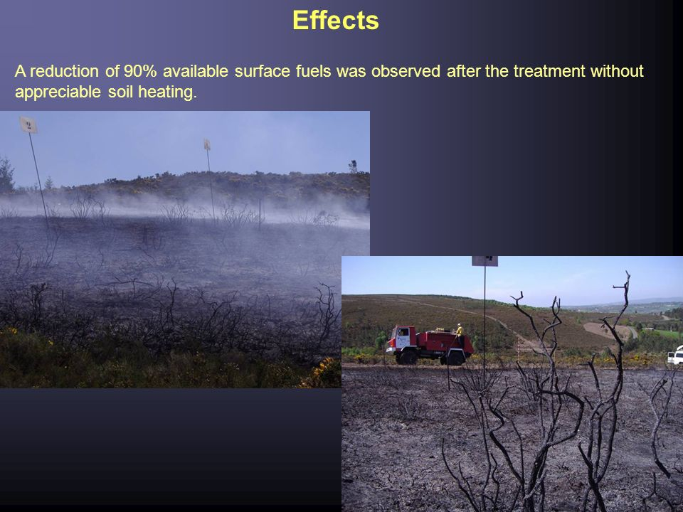 Effects A reduction of 90% available surface fuels was observed after the treatment without appreciable soil heating.