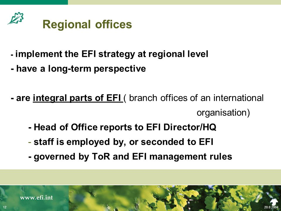 20.8.200412 - implement the EFI strategy at regional level - have a long-term perspective - are integral parts of EFI ( branch offices of an international organisation) - Head of Office reports to EFI Director/HQ - staff is employed by, or seconded to EFI - governed by ToR and EFI management rules Regional offices