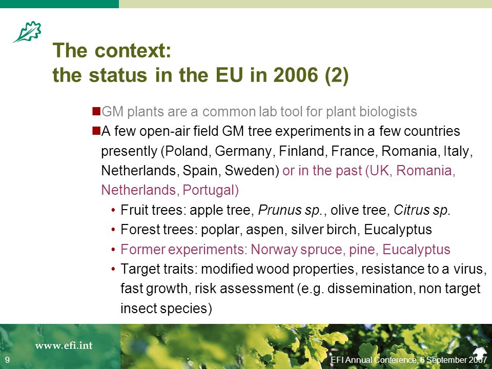 EFI Annual Conference, 6 September 20079 The context: the status in the EU in 2006 (2) GM plants are a common lab tool for plant biologists A few open-air field GM tree experiments in a few countries presently (Poland, Germany, Finland, France, Romania, Italy, Netherlands, Spain, Sweden) or in the past (UK, Romania, Netherlands, Portugal) Fruit trees: apple tree, Prunus sp., olive tree, Citrus sp.