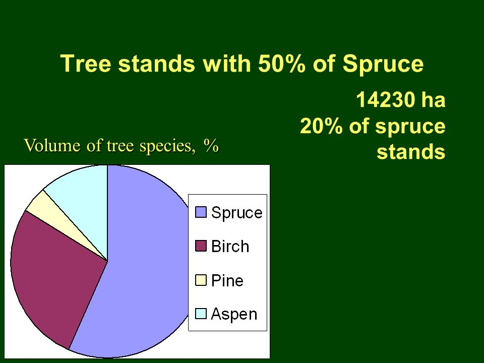 Tree stands with 50% of Spruce 14230 ha 20% of spruce stands Volume of tree species, %