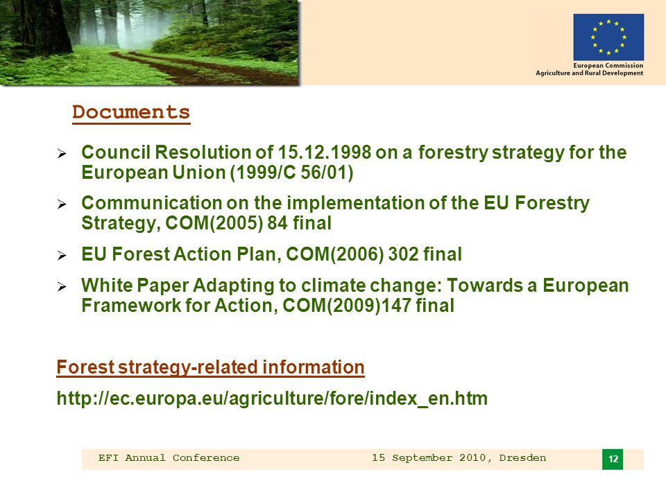EFI Annual Conference 15 September 2010, Dresden 12 Documents Council Resolution of on a forestry strategy for the European Union (1999/C 56/01) Communication on the implementation of the EU Forestry Strategy, COM(2005) 84 final EU Forest Action Plan, COM(2006) 302 final White Paper Adapting to climate change: Towards a European Framework for Action, COM(2009)147 final Forest strategy-related information